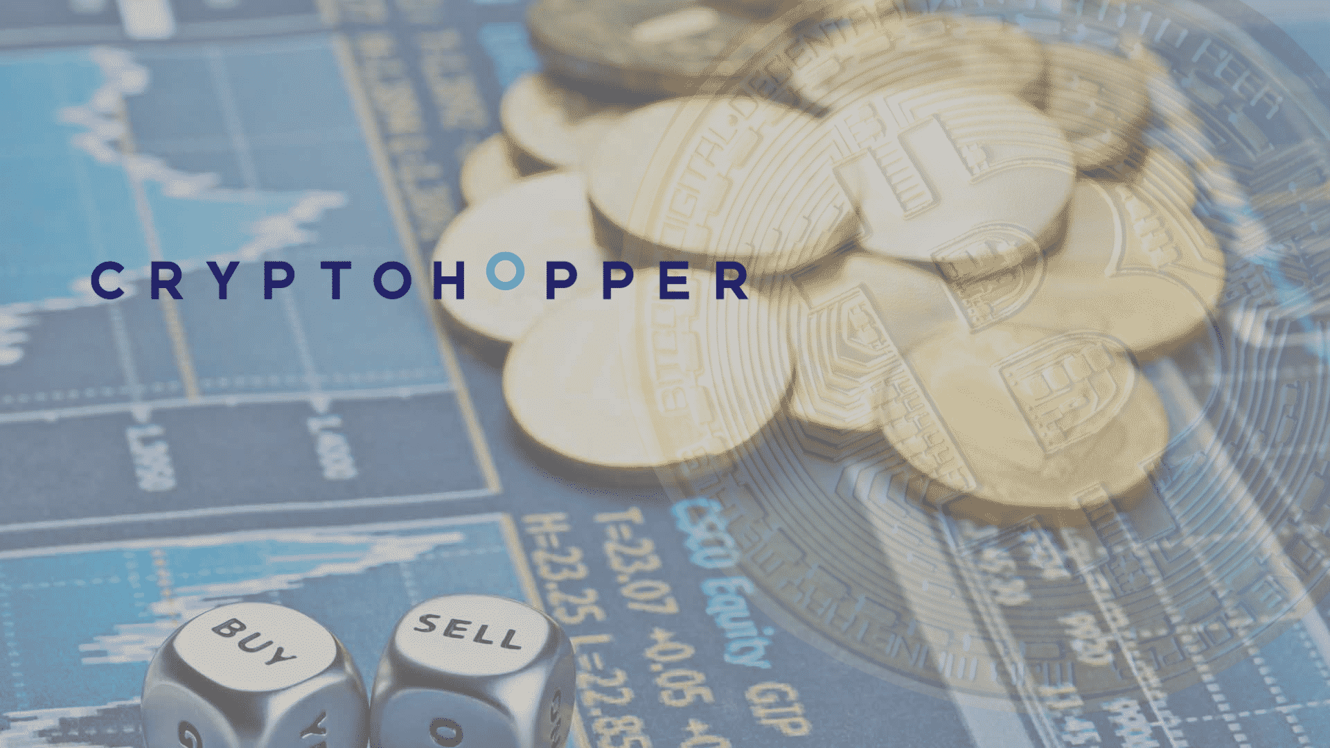 Follow and Copy Experienced Crypto Traders in the Cryptohopper Marketplace